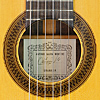 Rosette and label of Antonio Marin Montero luthier guitar spruce, rosewood, scale 65 cm, year 1986